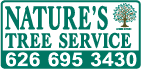 Natures Tree Service
